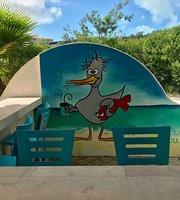 Naughty Gull