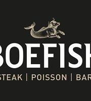 Boefish