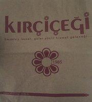 Kircicegi