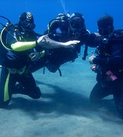 Potápění ašnorchlování