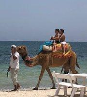Restaurant Cancun Beach, Sousse