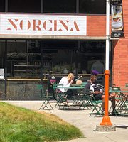 Norcina