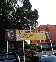 The Wonder Ocean