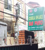 The Cobra Snake Ba Mao
