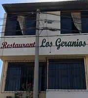Los Geranios III