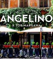 Antica Trattoria Angelino