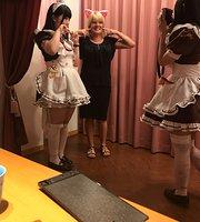 Akihabara Maid Cafe Gakuin Filles