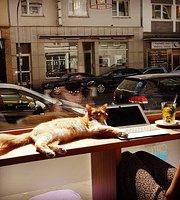 Catz Cafe