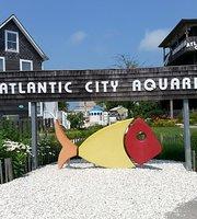 THE 10 BEST Zoos & Aquariums in New Jersey - TripAdvisor