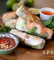 Sprout Vietnamese