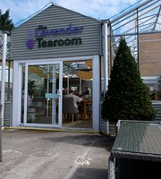 The Lavender Tearoom at Conwy Garden World