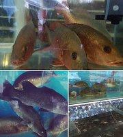 Brotherhood Seafood Paradise