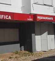 Casa Do Benfica Em Portalegre