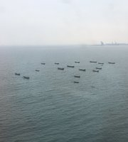 Yugong Wharf Seafood Fang
