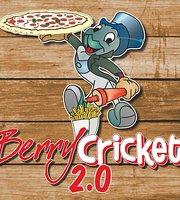 Berry Cricket 2.0