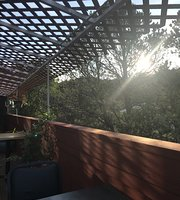 Honey Bears cafe