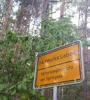 Waldgaststatte Zur Quelle Am Springsee