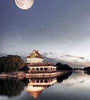 Chinees Indisch restaurant Gouden Leeuw