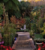 Birchgrove Nursery and Garden Center