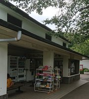 Tomoshibi Shop Four Seasons Forest