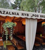 Bar Pod Brzoza