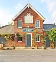 The Dove Dargate