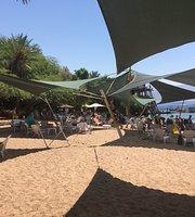 Dolphin Reef Eilat