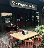 Homegrown Bagels
