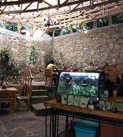 Cafe James Xilitla