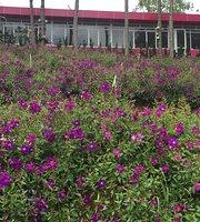 Tren Dinh Doi Trang