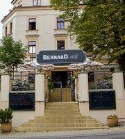 Bernard Pub Na Kotlarce