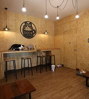 Doo Cat Cafe Phuket