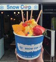 Snow Cup