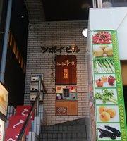 Gonogono Izayoi