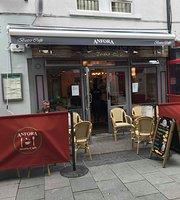 Anfora Bistro Cafe
