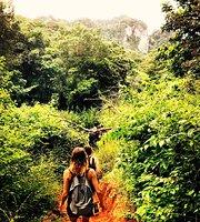 Natur- och vildmarksturer