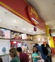 Yang Gastronomia Asiática