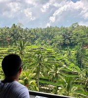 Surya Terrace