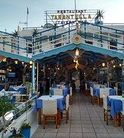 Taverna Tarantella