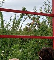 Pietree Orchard