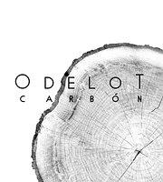 Odelot Carbón