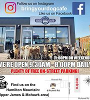 Bring Your Dog Cafe & Pub