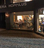 Galería Hopulus