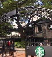 Starbucks - Tianyu