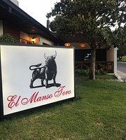 El Manso Toro Curicó