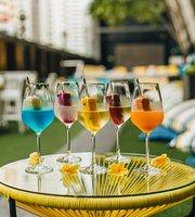Bar Canary