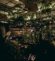 El Botanico