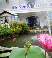 Cafe Lotus Ninh Kieu
