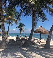Pavoreal Beach Resort Tulum 104 1 Updated 2018 Prices Hotel Reviews Mexico Tripadvisor