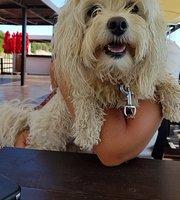 Soleado Parador de Playa Restaurante